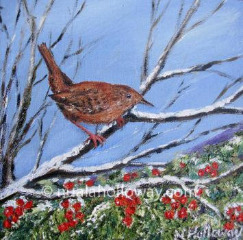 Holly Wren by NualaHolloway