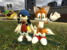Klonoa and Tails by kamiase