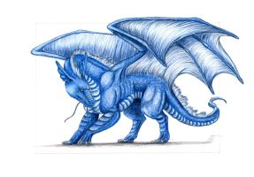 Saphi the blue dragon by MargotShareaza
