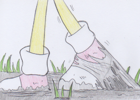 Muddy Path by ManicSam