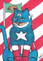 Catatin America - MoD PSC by Dangerskillz