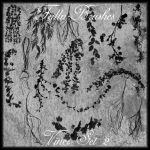 Vines Brushes Set 2 by Falln-Stock