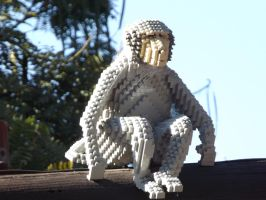This Is A Monkey by aguba