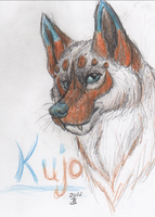 Kujo again :3 by BenRusk