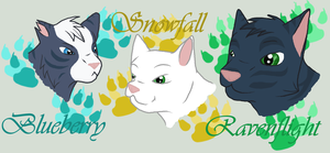 BluestarXThrushpelt : kits by Pearlfur