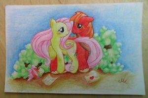 Fluttershy and Macintosh by MonikaKryza
