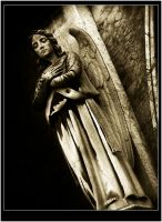 ThE AngeL by BlacKLabeLStevE
