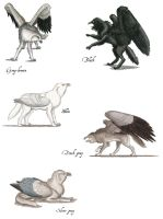Wolf Griffin color phases by Larua