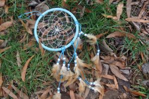The Dreamcatcher by psimpson1