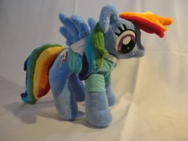 Rainbow Dash Plush by Sisk8508