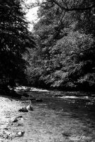 the river 2 by diesnail