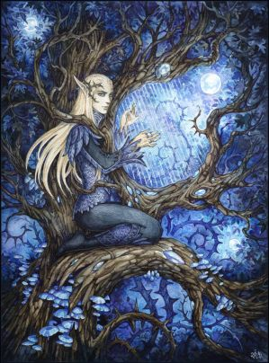 Music from the deepest forest by Candra