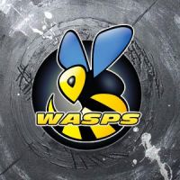 Wasps by denzoo