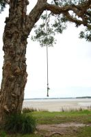 Rope Swing - STOCK by patchoulipatch