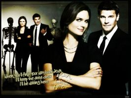 Bones season 3 Wallpaper by LaLaShivers