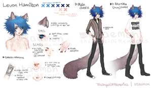 Levon reference sheet by TheAngelOfMemories