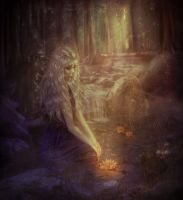 Enchanted forest by TatyanaChe