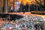 Balade d'automne by Nathellis