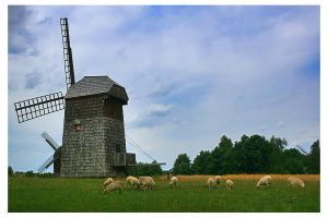 Windmill by aniabeata