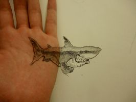 Shark hand/paper by naldojunio