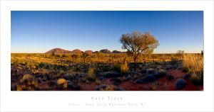 Morning light on Kata Tjuta by MattLauder