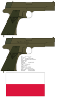 ViS wz. 35 by kfirpanther3