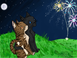 CrowxLeaf-Fireworks by unistar2000