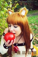 Cosplay Horo 37 by SaFHina