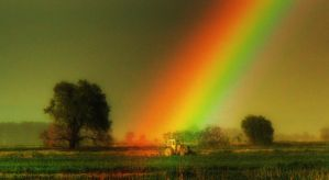 Under The Rainbow II by cavinton