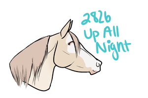 2826 Up All Night by bedfordblack