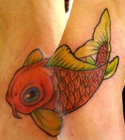 Koi Fish by DrMorgue