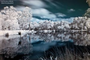 Balyang Sanctuary IR by daniellepowell82