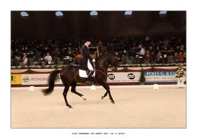 CDIW Dressage FEI Grand Prix 1 by ostefn