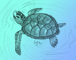 Traditional Sea Turtle by Reconnection