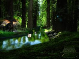 Unicorns in the Forest. by Binxy89