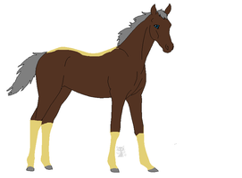 requested foal for Golden-Apple-Acres by sandym918