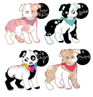 /Aus Doggie Auctions/ by BleedingColorAdopts