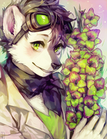 ::Commission:: ForestTail by Jotaku