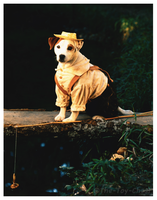 Wishbone Press Photo - Tom Sawyer by The-Toy-Chest