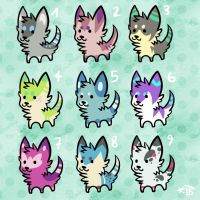 Canine Adopts by Spashai
