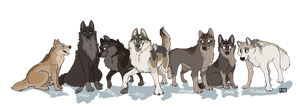 Sugoi Wolf Pack by FattCat