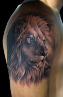 lion by bhbettie