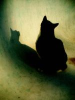 Rats in the Walls by lostinamap