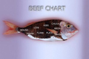Salty water beef chart by tillkey