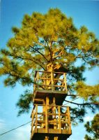 Our Treehouse Built by My Husband {Photo 4} by Empress-XZarrethTKon