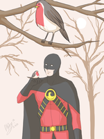 Robin by Colours07
