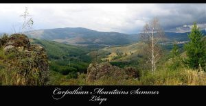 Carpathian Mountains Summer by Lileya