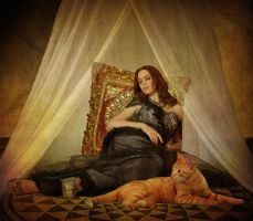 Cat of the Harem by katmary