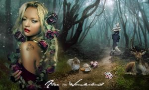Alice in Wonderland by nazflo2007