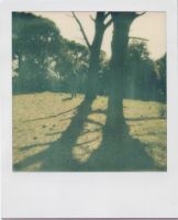 Polaroid II by invisigoth88